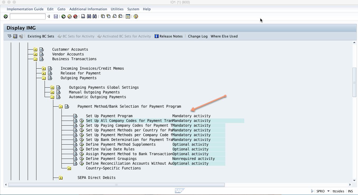 Customizing Menu Path for SAP Payment Program Configuration