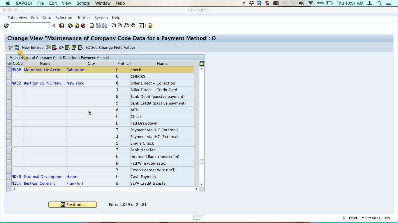 Change View for Company Code Data for a Payment Method