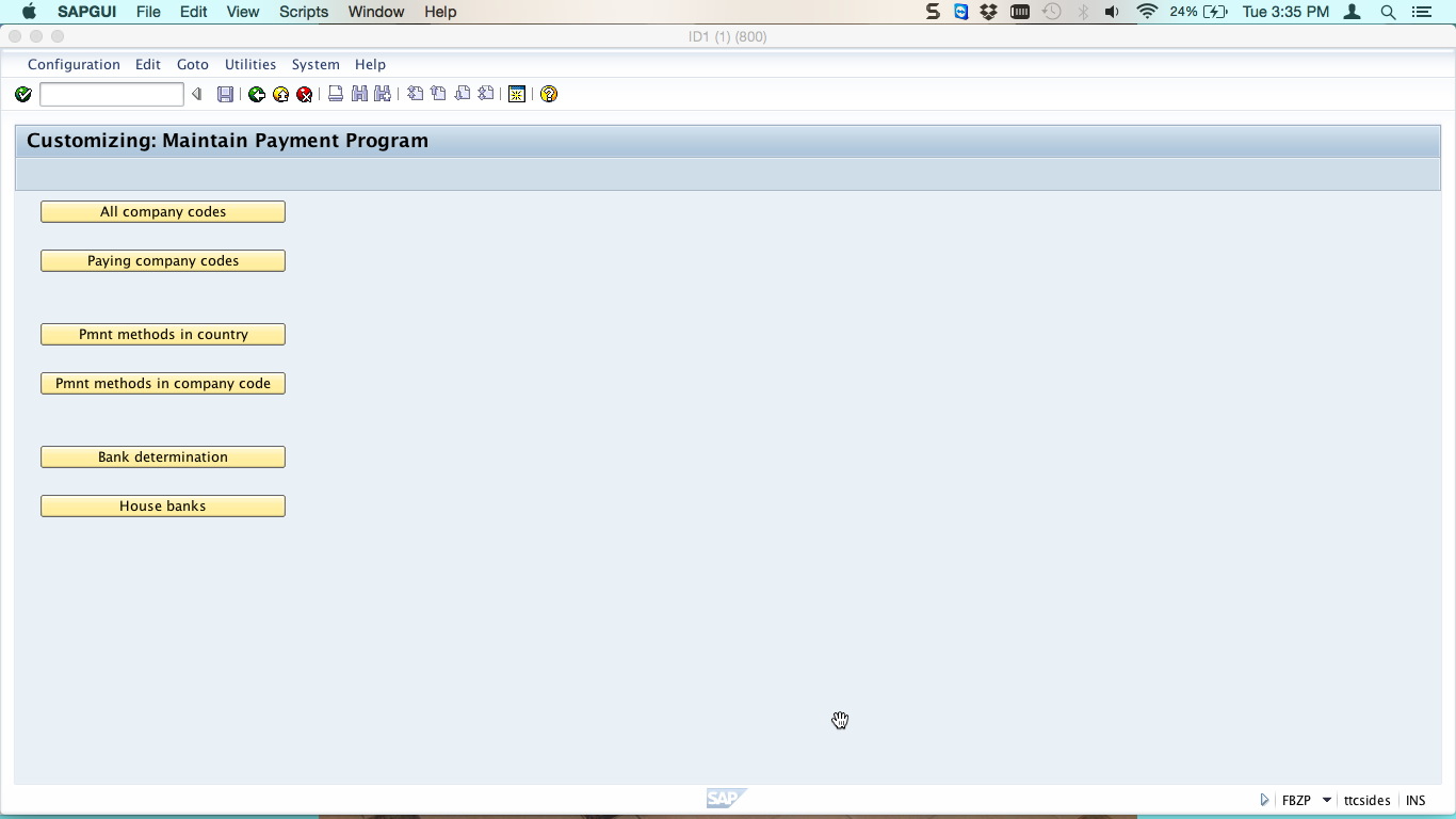Maintain SAP Payment Program Buttons