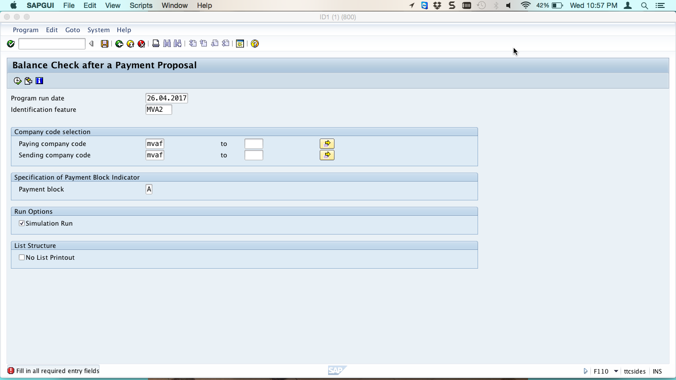 SAP Debit Balance Check Simulation