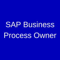 SAP Business Process Owner