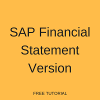 SAP Financial Statement Version