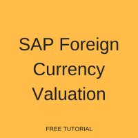 SAP Foreign Currency Valuation