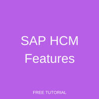 SAP HCM Features