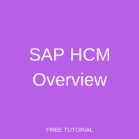 SAP HCM Overview