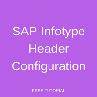 SAP Infotype Header Configuration
