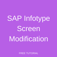 SAP Infotype Screen Modification