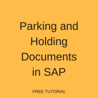 SAP Parking and Holding Documents