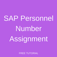 SAP Personnel Number Assignment