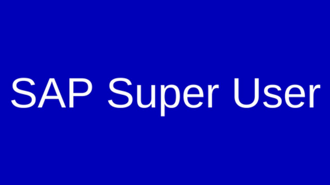 SAP Super User - ERProof