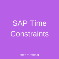 SAP Time Constraints
