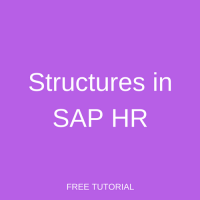 Structures in SAP HR
