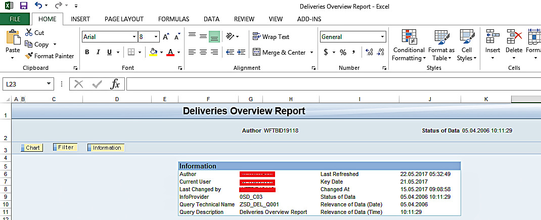 Information Section: SAP BEx Analyzer