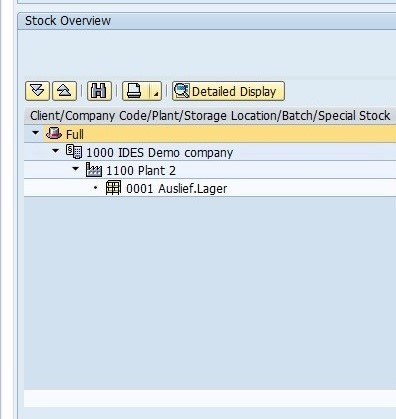 Left Column of SAP Stock Overview Listing Organizational Levels