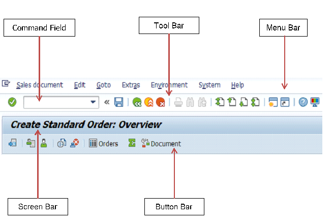 SAP Header Section