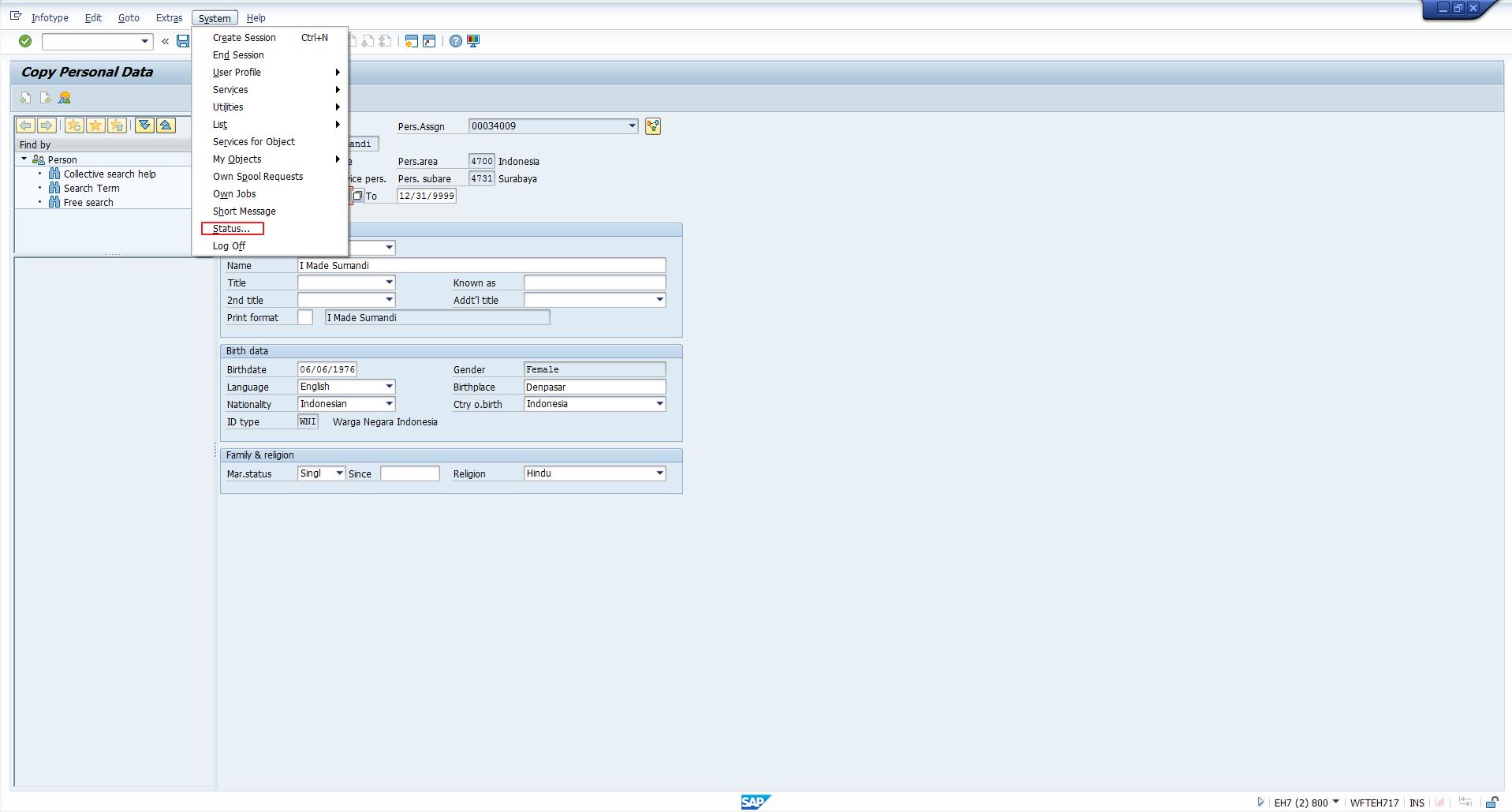 Display System Status