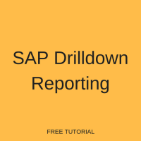 SAP Drilldown Reporting