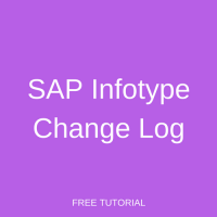 SAP Infotype Change Log