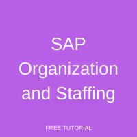 SAP Organization and Staffing