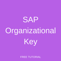 SAP Organizational Key
