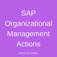 SAP Organizational Management Actions
