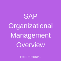 SAP Organizational Management Overview