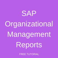 SAP Organizational Management Reports
