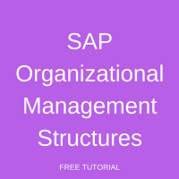 SAP Organizational Management Structures