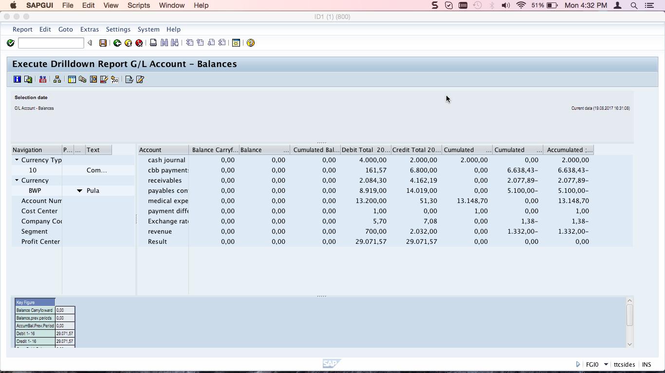 G/L Account - Balances Report