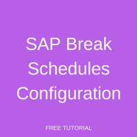 SAP Break Schedules Configuration
