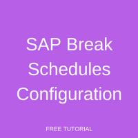 SAP Break Schedules Configuration