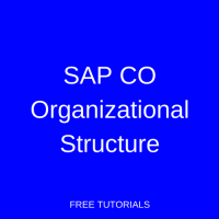 SAP CO Organizational Structure