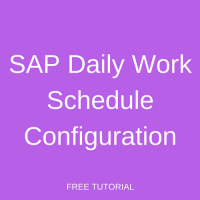 SAP Daily Work Schedule Configuration
