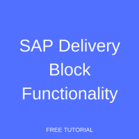 SAP Delivery Block Functionality