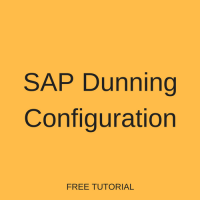 SAP Dunning Configuration
