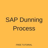 SAP Dunning Process