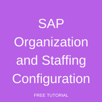 SAP Organization and Staffing Configuration