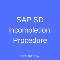 SAP SD Incompletion Procedure