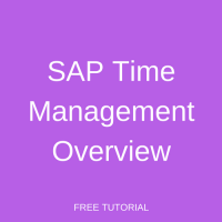 SAP Time Management Overview