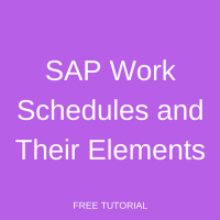 SAP Work Schedules and Their Elements