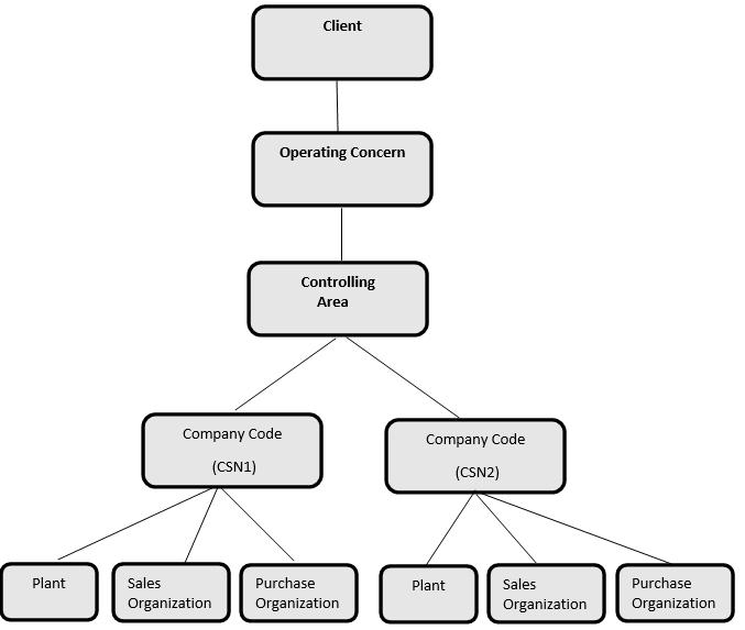 General Organizational Structure