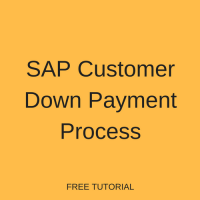 SAP Customer Down Payment Process