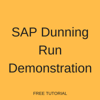 SAP Dunning Run Step by Step Demonstration