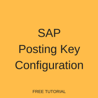SAP Posting Key Configuration
