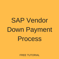 SAP Vendor Down Payment Process
