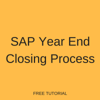 SAP Year End Closing Process