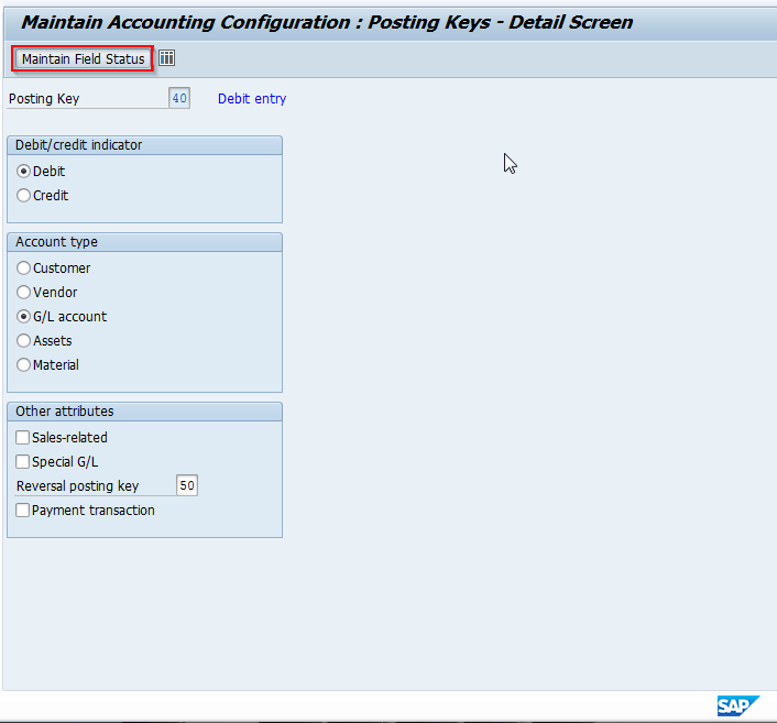 SAP Posting Key Configuration Details Screen