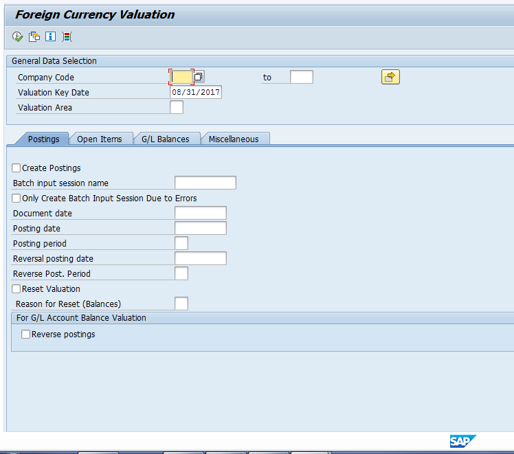 SAP FI Foreign Currency Revaluation Program