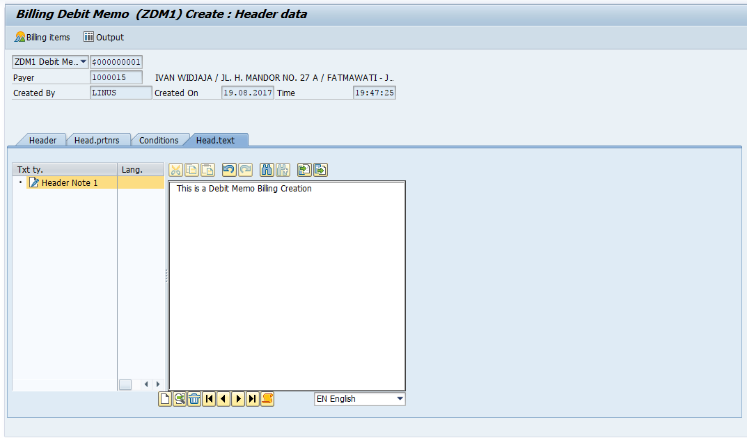 Example of Text Input in Debit Memo Invoice