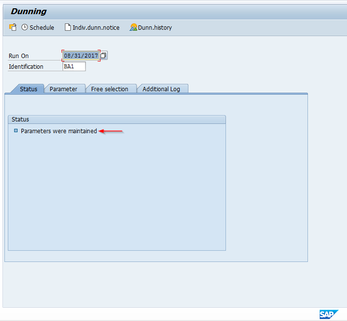 SAP Dunning Program Status Screen after Maintaining Parameters